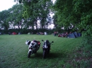 2012_Sommerparty_161